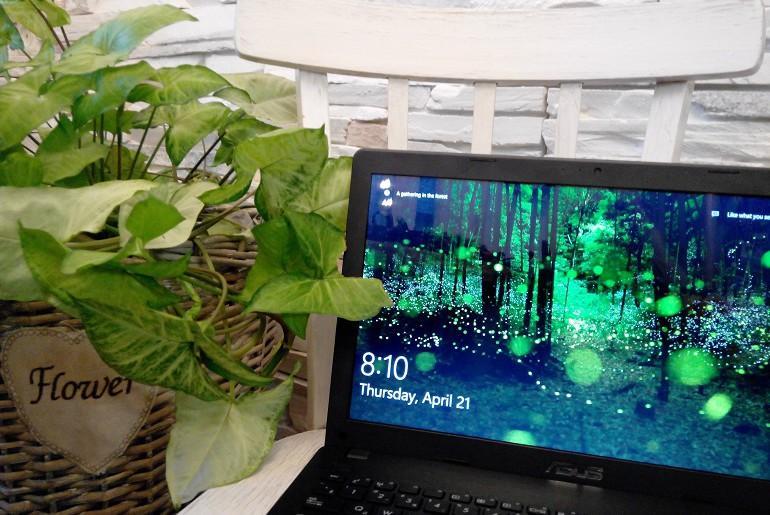 Красивая заставка от Windows 10