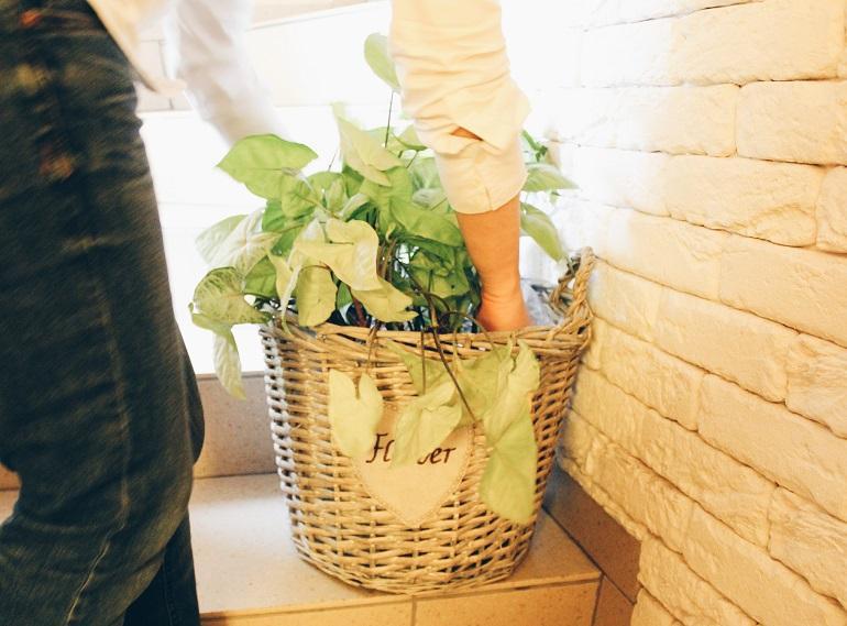 Девушка ставит цветок на лестницу