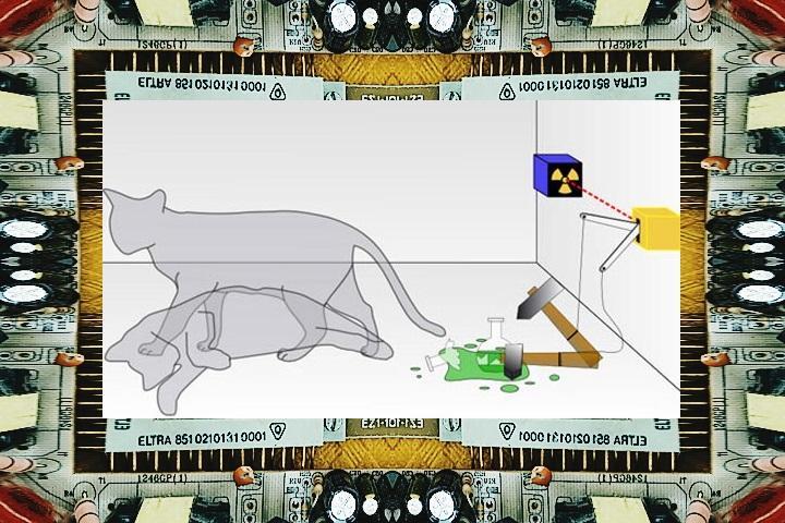 Парадокса с котом шредингера