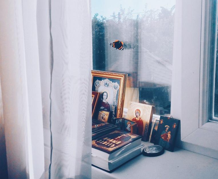Бабочка возле икон