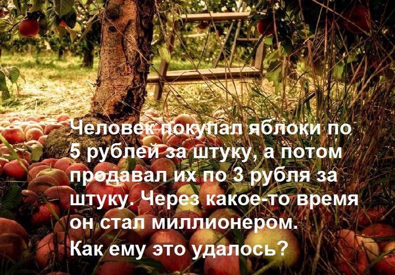 Яблоки. Загадки на логику с ответами