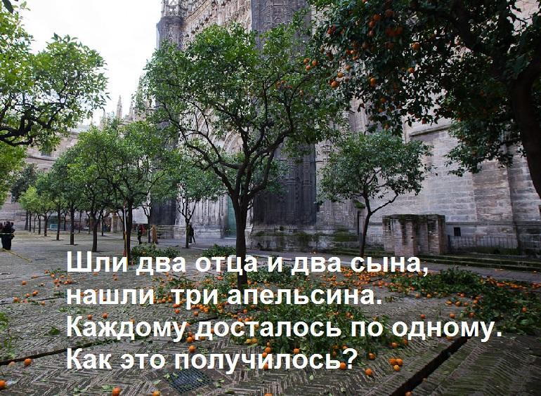 Апельсины на тротуаре. Загадка на логику