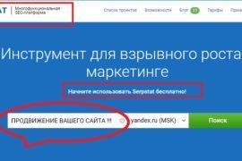 Serpstat отзывы