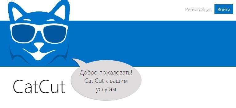 catcut.net отзывы