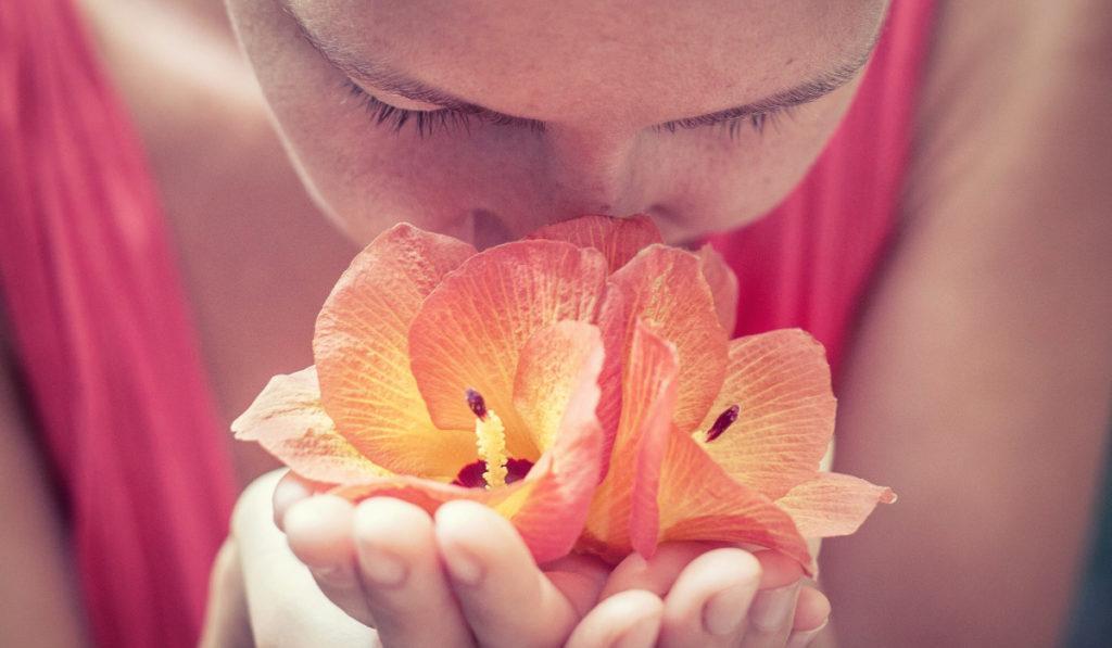 Изучение новых запахов