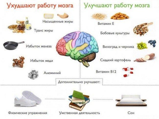 вещества, улучшающие работу мозга