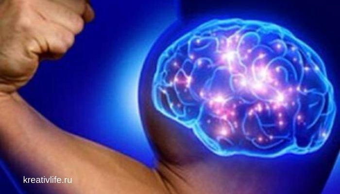 мозг, тренировка, мышление, память, гибкость ума,