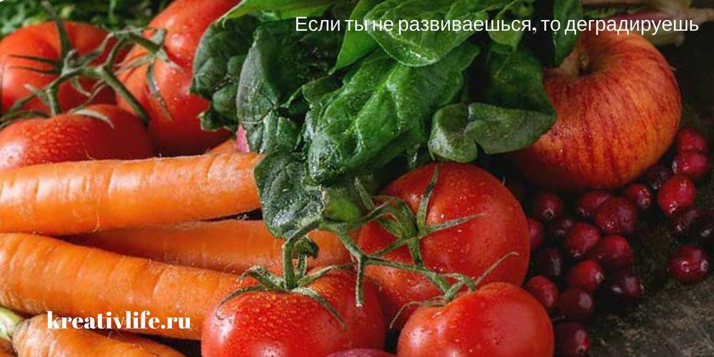 Растительная клетчатка: норма потребления, виды, польза